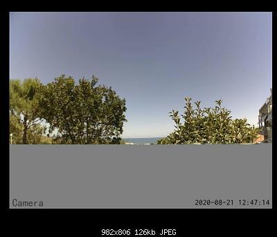 Webcam Ecowitt-29567361-b073-483f-8d4b-ca8f3810aa82.jpeg