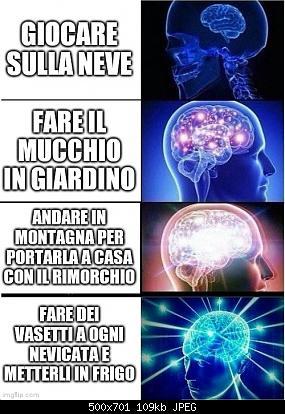 Meteo-meme-4d8bio.jpg