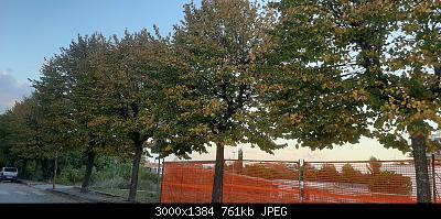 Nowcasting Vegetazione 2020-20201015_175825.jpg
