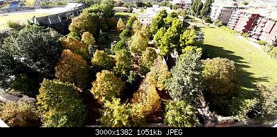 Nowcasting Vegetazione 2020-20201021_150525.jpg