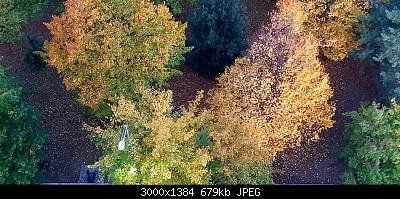 Nowcasting Vegetazione 2020-20201023_074957.jpg