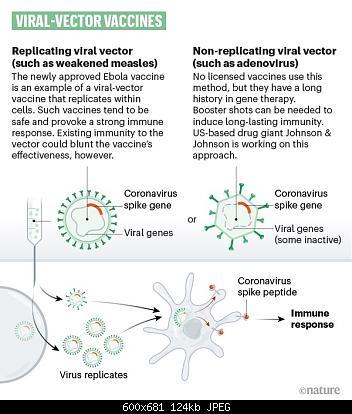 Nuovo Virus Cinese-d41586-020-01221-y_17935122.jpg