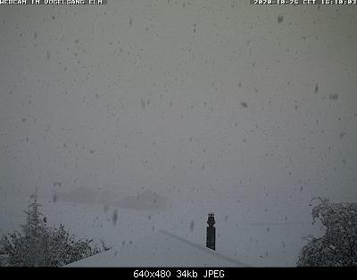 Nowcasting nivoglaciale Alpi autunno 2020-current.jpg