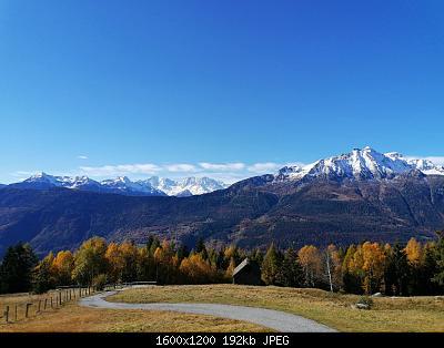 Alto Piemonte- autunno 2020-ac810a9e-4055-40eb-802d-1f4fa697ff61.jpg