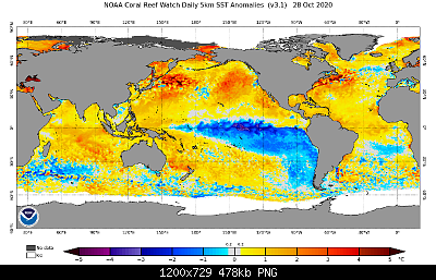 Modelli Autunno 2020-ssta.daily.current.png