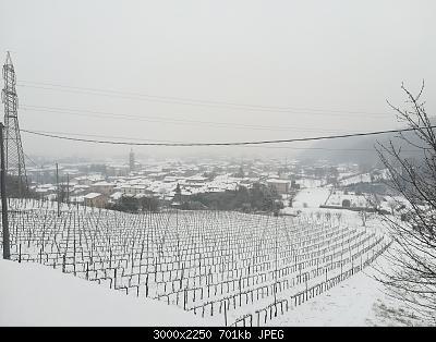 Reportage nevicata di inizio marzo 2018 sui Colli Bergamaschi-img_20180301_165518.jpg