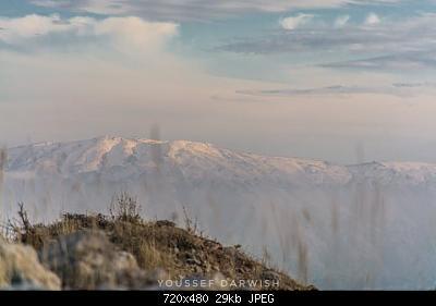 Catena del Libano - Situazione neve attraverso le stagioni-127956661_2766368787007353_3457829547715523522_n.jpg