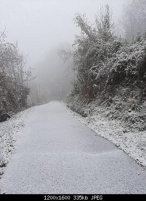 Alto Piemonte - Inverno 2020-21, Vera Gloria o Mesta Sconfitta? Seguiamo qui!-whatsapp-image-2020-12-02-at-15.50.30.jpeg