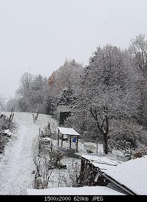 Alto Piemonte - Inverno 2020-21, Vera Gloria o Mesta Sconfitta? Seguiamo qui!-whatsapp-image-2020-12-02-at-16.01.37.jpeg