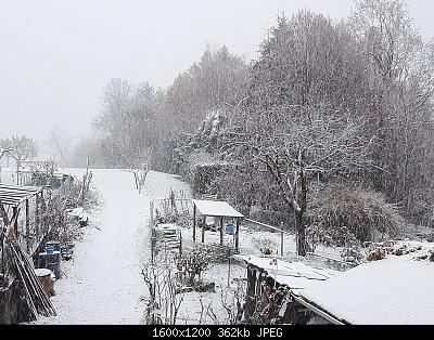 Alto Piemonte - Inverno 2020-21, Vera Gloria o Mesta Sconfitta? Seguiamo qui!-whatsapp-image-2020-12-04-at-07.52.20.jpeg