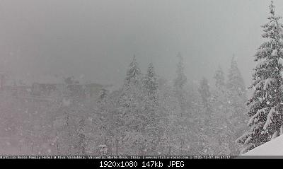 Alto Piemonte - Inverno 2020-21, Vera Gloria o Mesta Sconfitta? Seguiamo qui!-webcam-mirtillo.jpg