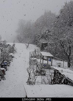 Alto Piemonte - Inverno 2020-21, Vera Gloria o Mesta Sconfitta? Seguiamo qui!-whatsapp-image-2020-12-07-at-10.00.31.jpeg