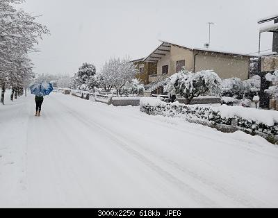 Nevicata veneta (pianura vicentina)-20201228_100238.jpg