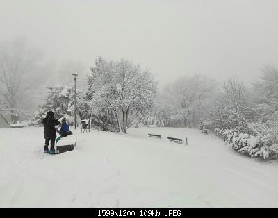 Torino e provincia - gennaio 2021-whatsapp-image-2021-01-02-at-12.28.03-1-.jpeg