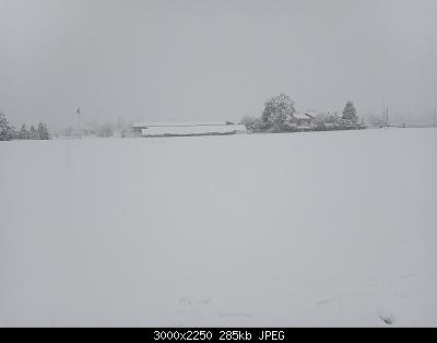 Nevicata veneta (pianura vicentina)-20201228_090436.jpg