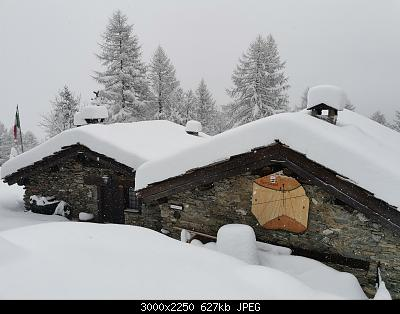 Torino e provincia - gennaio 2021-img_20210103_104801.jpg