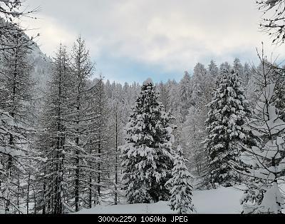 Pellando sui Monti della Luna (Torino)-img_20210106_085324.jpg