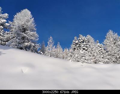 Pellando sui Monti della Luna (Torino)-img_20210106_093843.jpg