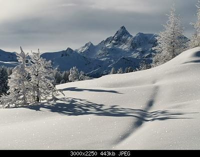 Pellando sui Monti della Luna (Torino)-img_20210106_095712.jpg