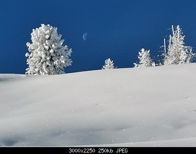 Pellando sui Monti della Luna (Torino)-img_20210106_100705.jpg