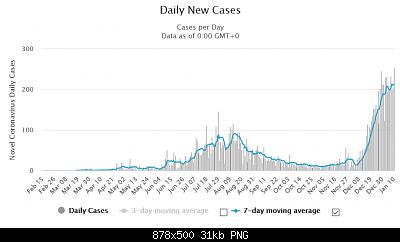 Nuovo Virus Cinese-screenshot_2021-01-11-eswatini-coronavirus-11-435-cases-and-295-deaths-worldometer.png