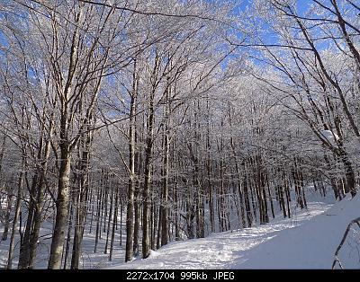 Toscana 9-16 gennaio-dscn0817.jpg