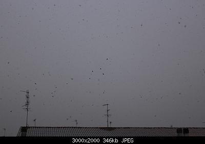 Nowcasting Emilia - Basso Veneto - Bassa Lombardia, 16 Gennaio - 31 Gennaio-img_5504.jpg