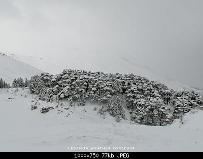 Catena del Libano - Situazione neve attraverso le stagioni-140188665_3974155519264042_8137679543927896291_o.jpg