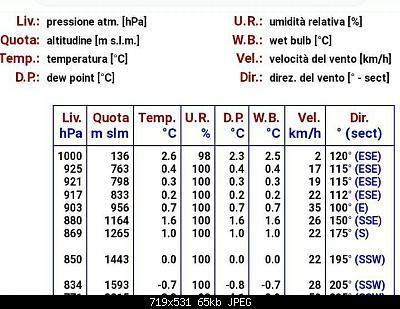 NOWCASTING INVERNO 2020-2021: Varese - Como - Lecco - Canton Ticino-screenshot_20210121-200418_chrome.jpg