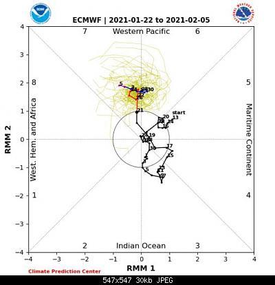 Analisi modelli gennaio 2021-4190edc4-e83f-4628-9efe-a0f570119219.jpeg