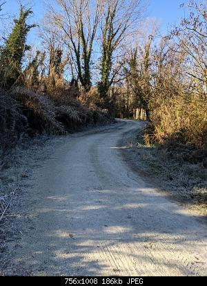 Romagna dal 25 al 31 gennaio 2021-pxl_20210126_090818183.jpg
