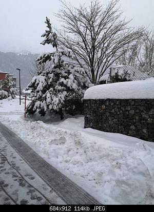 NOWCASTING INVERNO 2020-2021: Varese - Como - Lecco - Canton Ticino-img_20210128_080510.jpg