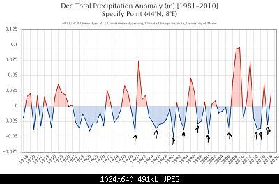 Gennaio 2021: anomalie termiche e pluviometriche-inkedncep1_633-1-_li.jpg