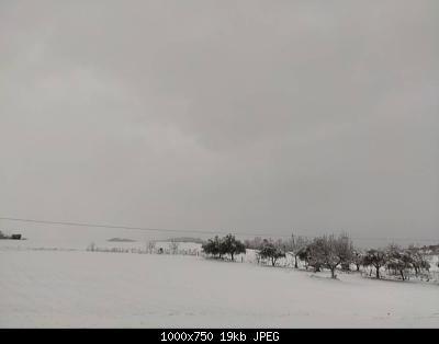 Romagna dall'8 al 14 febbraio 2021-img_20210213_081154.jpg
