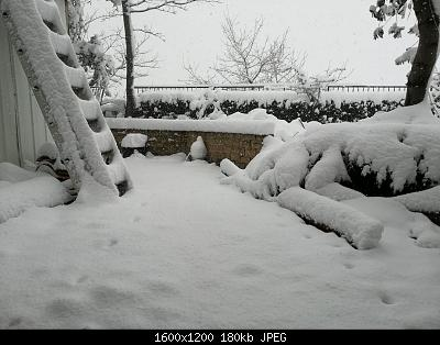 (S)nowcasting Appennino centrale (Lazio - Abruzzo - Umbria - Marche), inverno 2020/2021.-img-20210213-wa0026.jpg