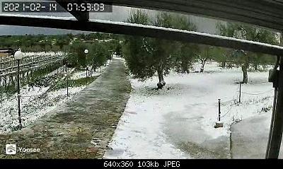 (S)nowcasting Puglia 14 febbraio 2021-img_5100.jpg