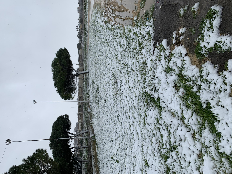Febbraio 2021: anomalie termiche e pluviometriche-neve-brindisi-14-feb.jpg