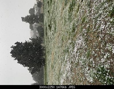 Febbraio 2021: anomalie termiche e pluviometriche-neve-brindisi-3.jpg