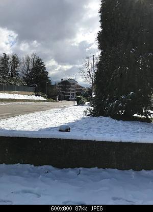 Foto neve 13/14 febbraio 2021-neve-4.jpg