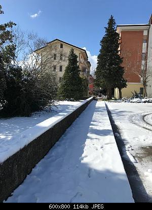 Foto neve 13/14 febbraio 2021-neve-3.jpg