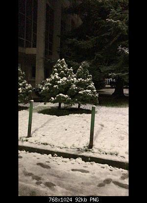 Foto neve 13/14 febbraio 2021-4179bc4f-6335-4e28-971e-adca1defba41.jpg