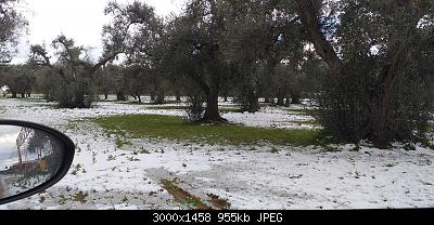 Foto neve 13/14 febbraio 2021-20210215_084151.jpg