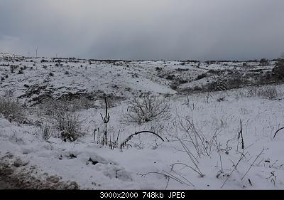 Foto neve 13/14 febbraio 2021-img_0859.jpg