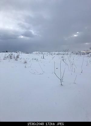 Foto neve 13/14 febbraio 2021-img-20210214-wa0032.jpg