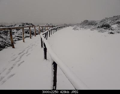 Foto neve 13/14 febbraio 2021-14feb21-11-.jpg