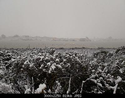 Foto neve 13/14 febbraio 2021-14feb21-12-.jpg