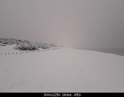 Foto neve 13/14 febbraio 2021-14feb21-13-.jpg