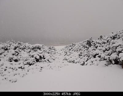 Foto neve 13/14 febbraio 2021-14feb21-14-.jpg