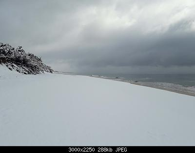 Foto neve 13/14 febbraio 2021-14feb21-16-.jpg