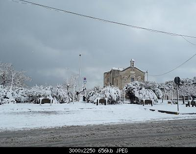 Foto neve 13/14 febbraio 2021-14feb21-10-.jpg